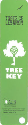 Picture of Tree Key